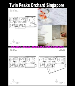 Twin Peaks Condominium Singapore 3